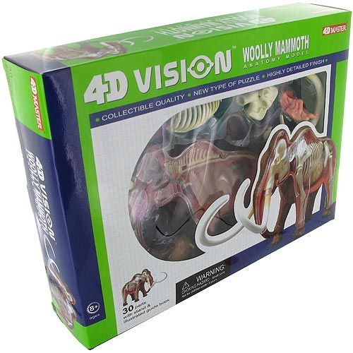 4D Woolly Mammoth Anatomy Model - Image two