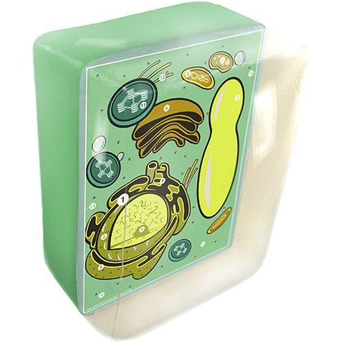 BIO2 Inflatable Plant Cell - Image one