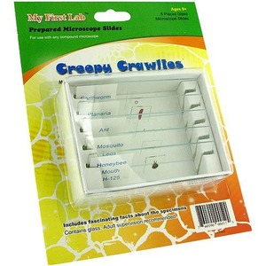 Creepy Crawlies Prepared Slide Set - Image One