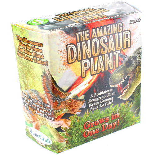 The Amazing Dinosaur Plant  - Image one
