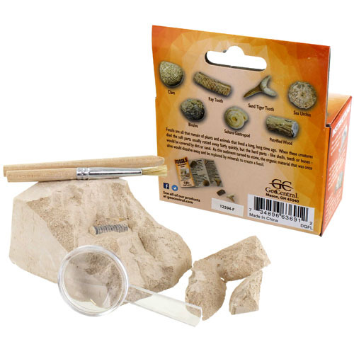 Fossils Excavation Mini Kit - Image two
