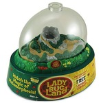 Original Ladybug Land Kit with Voucher.