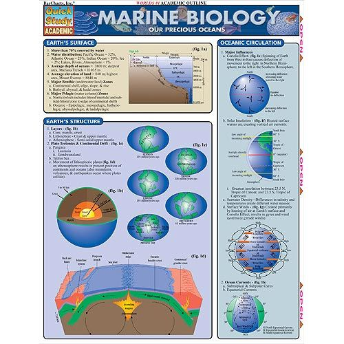 Marine Biology list of subjects in college