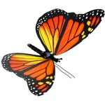 Buy Moving Butterfly - Monarch.