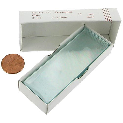 Plain Microscope Slides - Pack of 12 - Image one