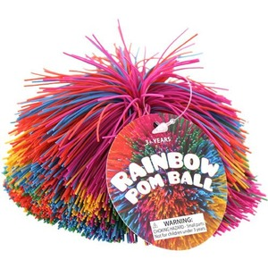 Rainbow Pom Ball - Image One