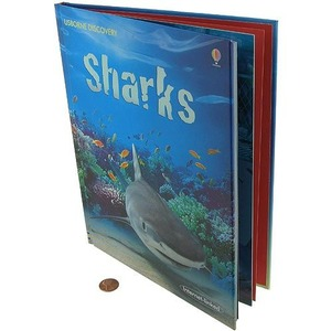 Sharks Discovery Book - Image One