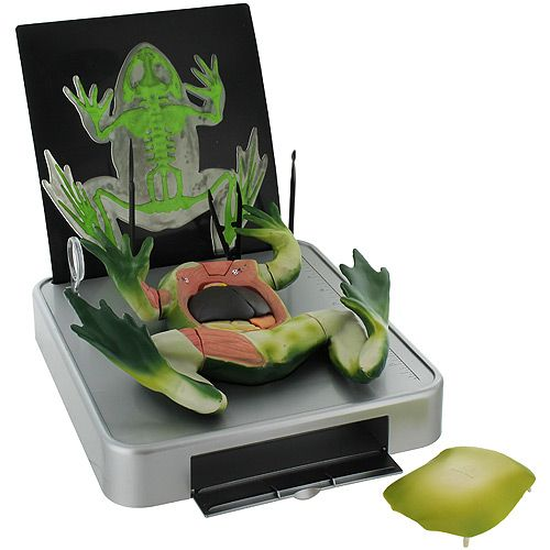 Simulated Frog Dissection Kit - Image two