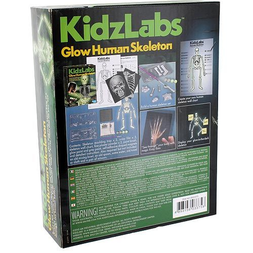 glow human skeleton 4m kit by xump, Skeleton