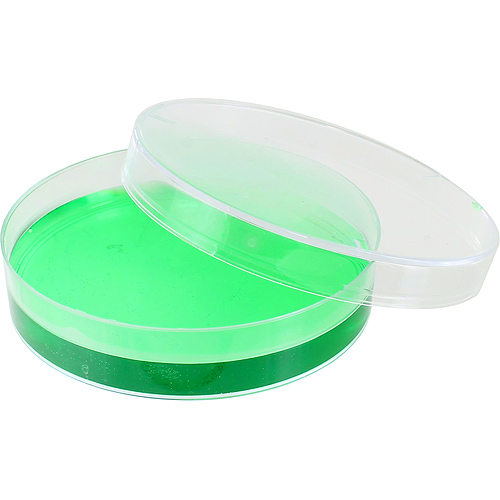 Plastic Petri Dish - 55mm - Image one