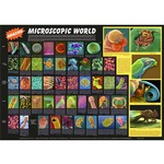 Photo of the: Amazing Microscopic World Poster