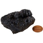 Photo of the: Botryoidal Hematite - Large Chunk (2-3 inch)