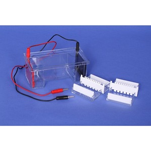 Photo of the: Electrophoresis Tank
