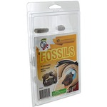 Photo of the: Explore Geology - 10 Fossils Set