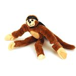 Photo of the: Flying Screaming Sling-Shot Monkey