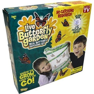 Photo of the: Original Butterfly Garden Kit with Voucher