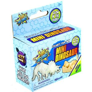 Photo of the: Mini Dinosaur Excavation Kit