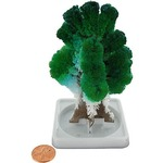 Buy Crystal Growing Mystical Tree.