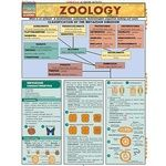 Photo of the: Zoology Study Chart