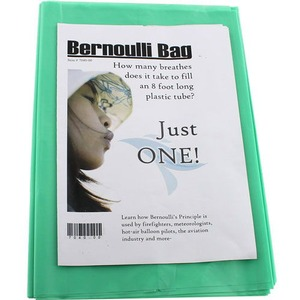 Photo of the Bernoulli Bag - Pack of 4