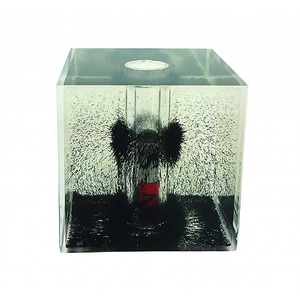 Photo of the Magnetic Field Cube