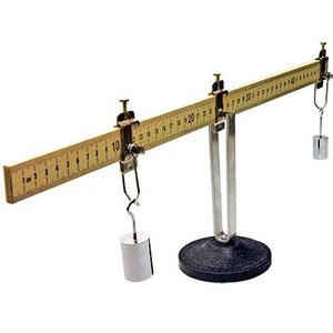 Photo of the New York Demonstration Balance