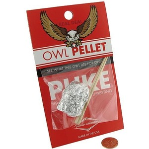Photo of the Owl Pellet