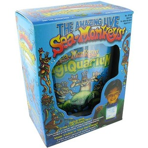 Photo of the Sea Monkeys MagiQuarium